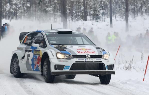 Картинка Зима, Снег, Лес, Volkswagen, WRC, Rally, Ралли, Polo, Sebastien Ogier