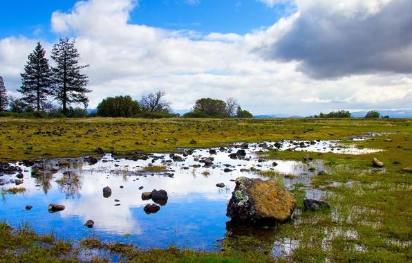 Картинка небо, трава, природа, озера