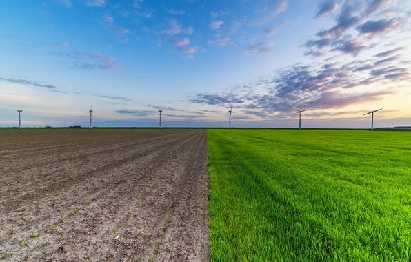 Фото обои ветряки, небо, поле