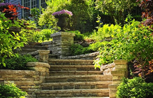 Картинка зелень, цветы, дом, сад, лестница, ступеньки, кусты