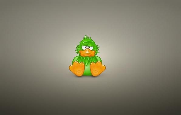 Картинка животное, минимализм, сидит, зеленая, утка, duck