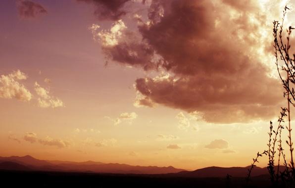 Картинка небо, трава, облака, пейзаж, растения, nature, view, clouds