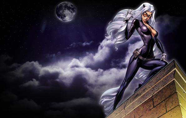 Картинка крыша, небо, взгляд, ночь, луна, маска, арт, костюм, белые волосы, catwoman, женщина кошка