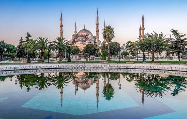 Картинка деревья, отражение, пальмы, бассейн, Стамбул, Мечеть Султана Ахмета, Турция, Istanbul, Turkey, Голубая мечеть, Blue Mosque, ...