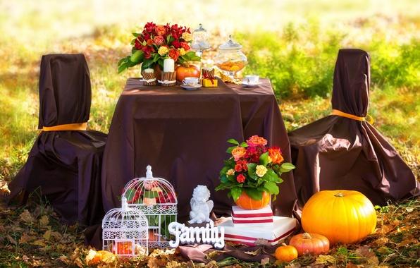 Фото пикник осень
