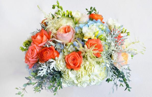 Картинка цветы, розы, букет, rose, flowers, гортензия, bouquet, фрезия, hydrangea, freesia