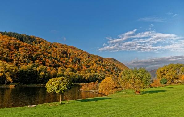 Картинка осень, небо, трава, солнце, облака, деревья, река, берег, Германия, Ediger-Eller