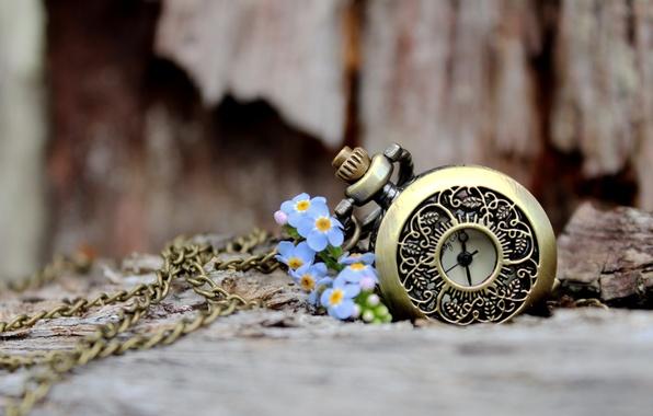 Картинка любовь, цветы, лепестки, боке