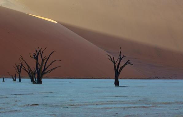 Картинка desert, africa, dunes, Deadvlei, namibia