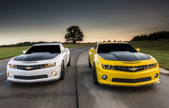 Картинка дорога, белый, небо, желтый, Chevrolet, Камаро, Шевроле, Camaro, передок, Muscle car, Мускул кар, 1LE