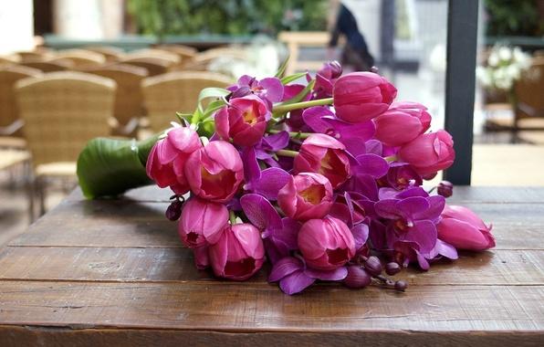 Картинка листья, цветы, яркий, розовый, цвет, насыщенный, лепестки, тюльпаны, орхидеи, бутоны