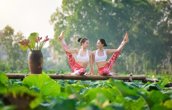 Картинка лето, поза, девушки, ноги, гимнастика, йога, азиатки