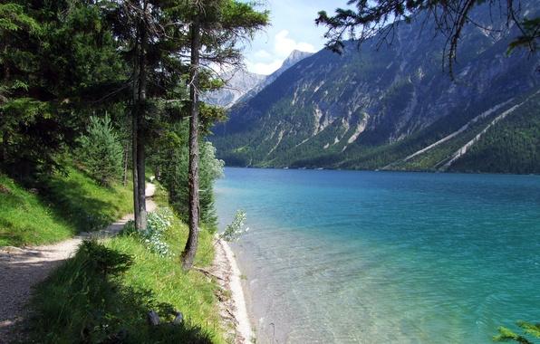 Картинка трава, вода, деревья, озеро, берег, гора, тропа