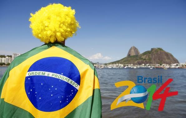 Картинка футбол, logo, Бразилия, football, flag, кубок мира, World Cup, Brasil, FIFA, fan, 2014, болельщик