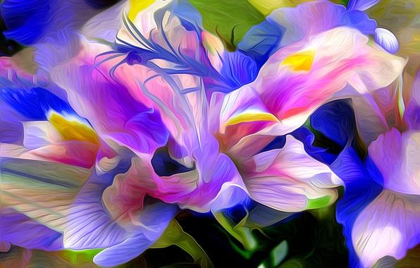 Картинка цветок, природа, абстракция, растение, лепестки