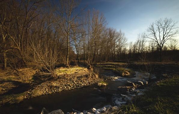 Картинка пейзаж, природа, река, весна, утро