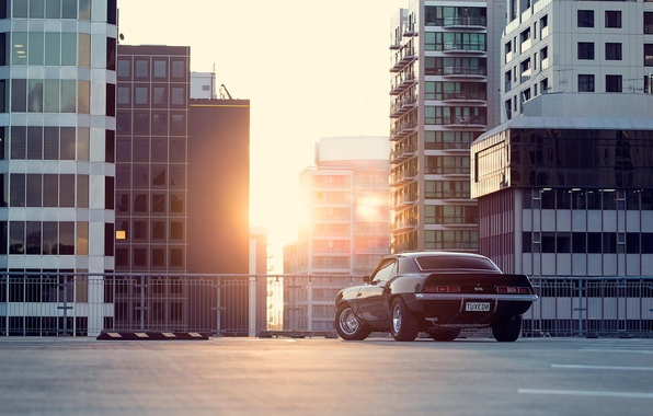 Картинка солнце, город, чёрный, Chevrolet, Camaro, шевроле, мускул кар, black, блик, небоскрёбы, мегаполис, muscle car, rear, …