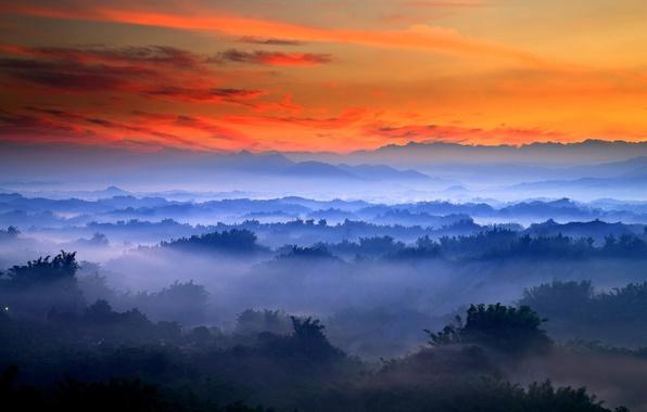 Картинка morning, fog, sunrise, valley, mist