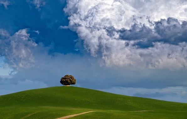 Картинка облака, дерево, холм