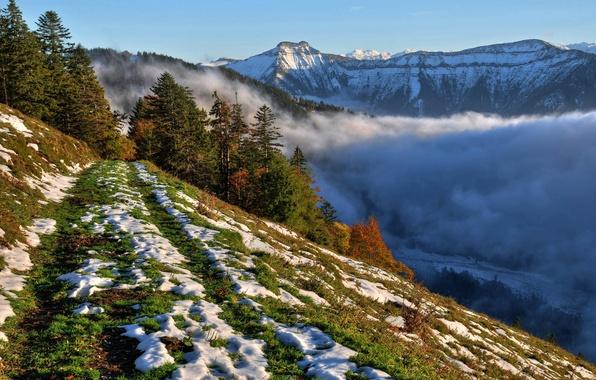 Картинка небо, снег, деревья, горы, туман, склон