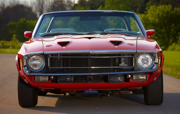 Картинка Mustang, Ford, Shelby, GT500, Форд, 1969, Мустанг, передок, Muscle car, Convertible, Мускул кар, Шелби