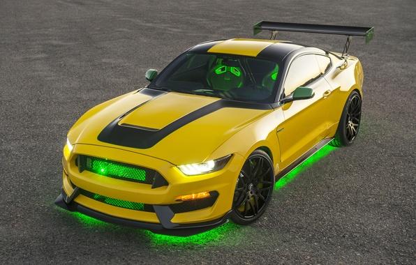 Картинка Mustang, Ford, Shelby, мустанг, форд, шелби, GT350