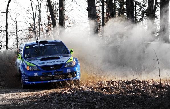 Картинка Пыль, Деревья, Subaru, Impreza, Машина, Занос, Фары, WRC, Субару, Rally, Ралли, Передок