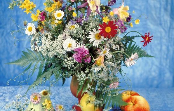 Картинка цветы, фото, яблоки, ромашки, букет, натюрморт, гвоздики, маргаритка