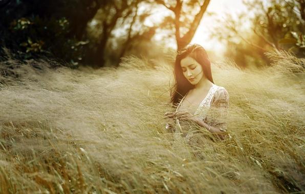 Фото обои поза, девушка, природа