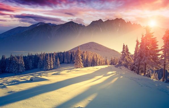 Картинка холод, зима, небо, солнце, облака, свет, снег, деревья, горы, свежесть, природа, пейзажи, тишина, ели, тени, …