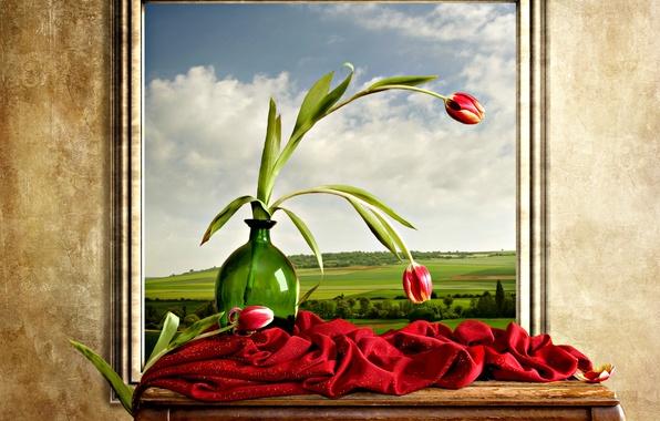 Картинка небо, пейзаж, цветы, природа, тюльпаны, облаках