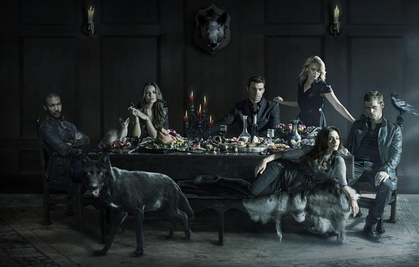 Картинка The Vampire Diaries, crow, raven, cat, wolf, Vampire, Joseph Morgan, Phoebe Tonkin, 2014, pig, Daniel …