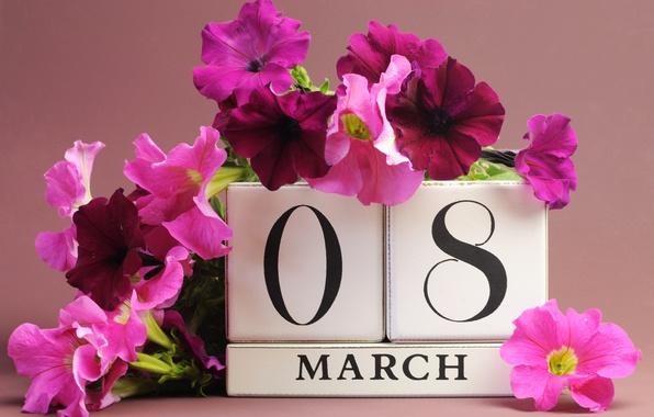 Картинка цветы, 8 марта, дата, поздравление, петунья, женский день
