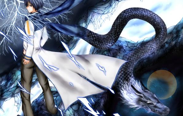 Картинка небо, звезды, ветви, луна, дракон, арт, парень, Vocaloid, Вокалоид, Kaito