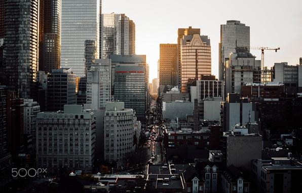 Картинка свет, город, улица, дома, Канада, Торонто, высотки