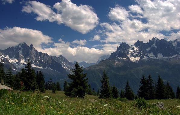 Картинка лес, лето, небо, трава, облака, цветы, горы, вершины, Альпы, луга