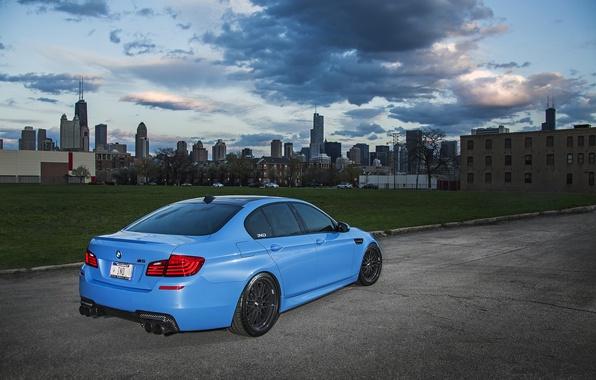 Картинка голубой, бмв, BMW, матовый, вид сзади, f10, Yas Marina Blue