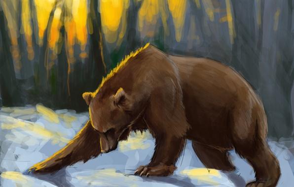 Картинка лес, снег, закат, медведь, арт, солнечные лучи, Brown bear
