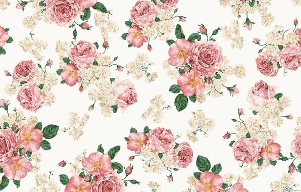 Картинка цветы, розы, букет, шиповник, листочки