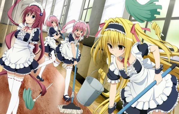Картинка взгляд, аниме, коридор, уборка, girls, anime, веселье, любовные неприятности, инвентарь, to love ru, nana asta …