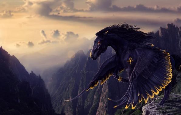 Картинка взгляд, рендеринг, крылья, грива, черная лошадь