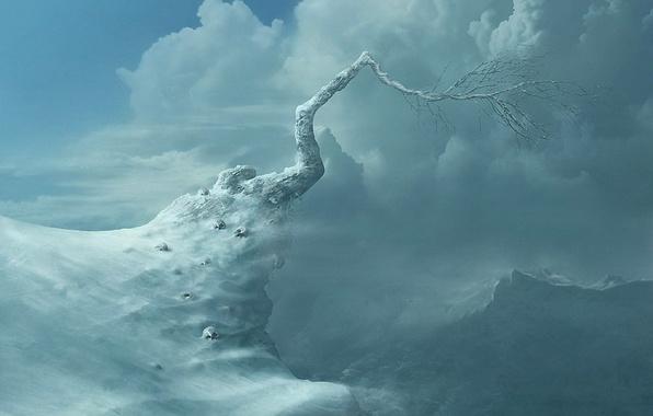 Картинка зима, облака, горы, дерево, черепа