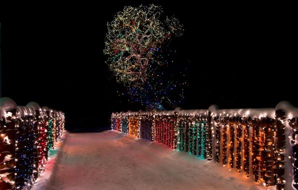 Картинка зима, снег, ночь, мост, lights, дерево, bridge, wood, night, snow