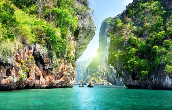 Картинка море, вода, деревья, пейзаж, природа, океан, скалы