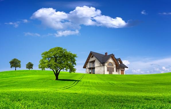 Картинка поле, лето, небо, трава, облака, деревья, пейзаж, природа, дом, дерево, домик, summer, house, grass, sky, …