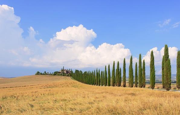 Картинка поле, небо, облака, деревья, синий, дом, Италия, ферма, Тоскана