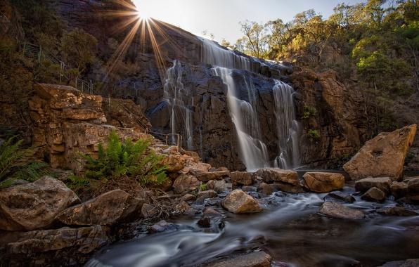 Картинка пейзаж, водопад, Mckenzies Fall, Grampians National Park
