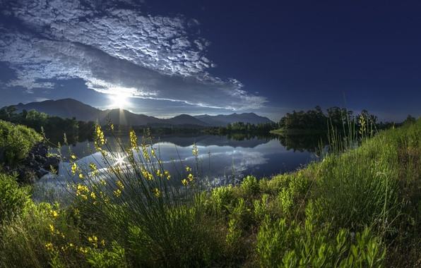 Картинка трава, облака, горы, отражение, река, восход, рассвет, Франция, утро, France, Корсика, Corsica, Alistro, река Алистро