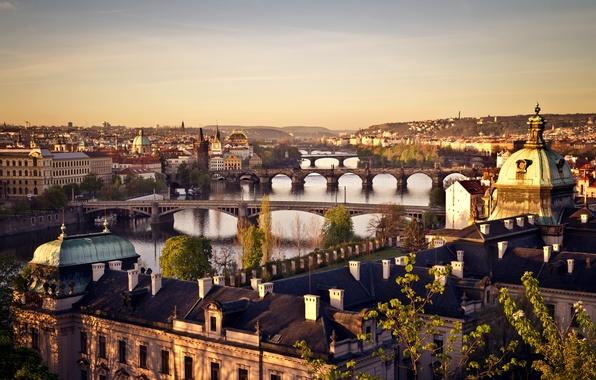 Картинка деревья, город, река, рассвет, здания, дома, крыши, Прага, Чехия, панорама, мосты, Prague, Влтава, Praha, Czech …