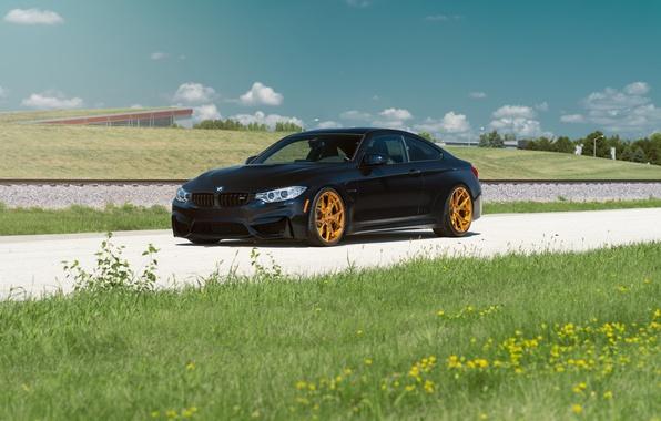 Картинка BMW, Car, Grass, Front, Black, Day, Summer, Azurite